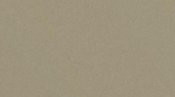 Сайдинг CEDRAL smooth (гладкий) С03