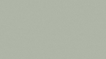 Сайдинг CEDRAL smooth (гладкий) С06
