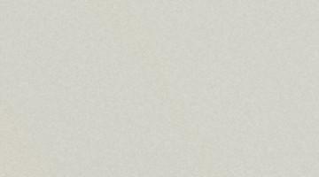 Сайдинг CEDRAL smooth (гладкий) С07