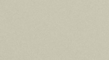 Сайдинг CEDRAL smooth (гладкий) С08