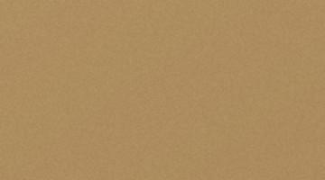 Сайдинг CEDRAL smooth (гладкий) С11